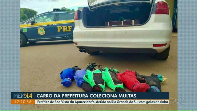 MP de Contas protocola Representação para apurar dano ao erário pelo Prefeito Municipal de Boa Vista da Aparecida